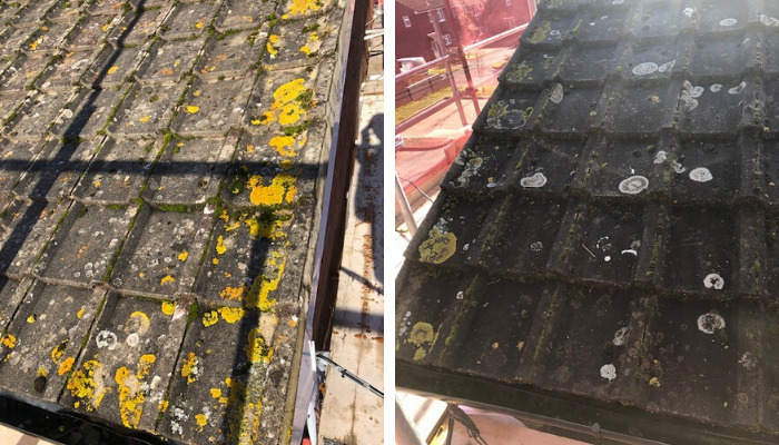 Token Cleaning - Roof Cleaning